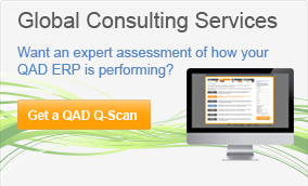 QAD Global Consulting Services
