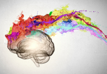 brain, creative, colors, innovation, workplace