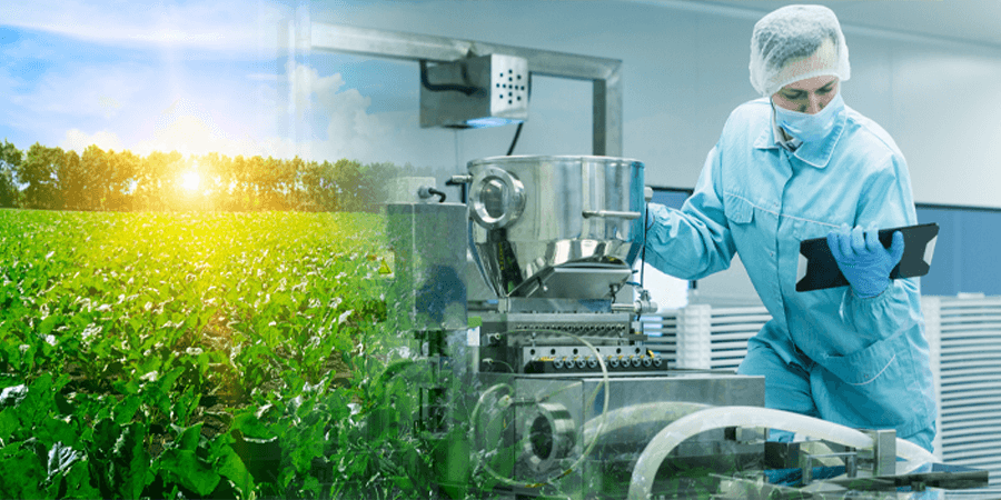 manufacturing, beet sugar, sugar, food and beverage manufacturing, beet sugar shortage